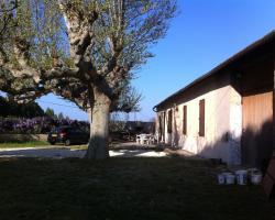 Temple Farm - 18th Century Provençal Farmhouse