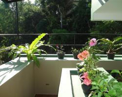 Tranquil Hills Kandy
