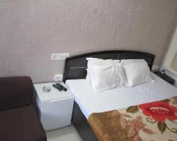 Hotel Mount Villa