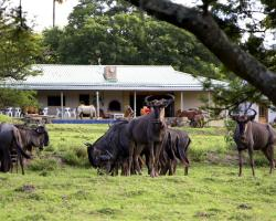 Santa Paloma Guest Farm
