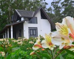 Sky Breeze Nuwara Eliya, Sri Lanka