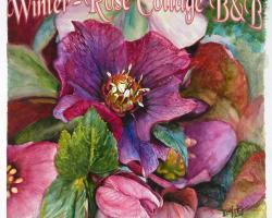 A Winter-Rose Cottage B&B