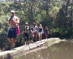 Jungle Monkey Backpackers