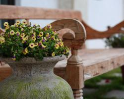 Flower Villa