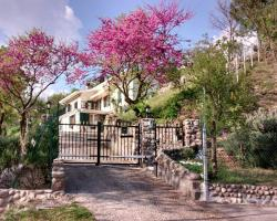Villa Poggio Ulivo B&B