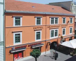 Golden Ship Hotel / Aranyhajo Fogado