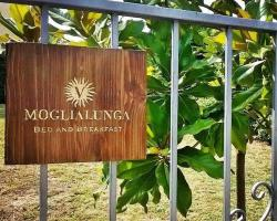 Moglialunga Bed and Breakfast