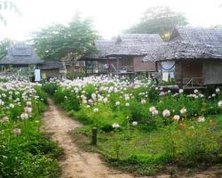 Family Hut Pai