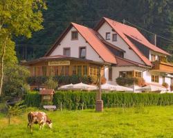 Gasthaus - Pension Hohberg
