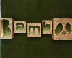 Bamboo Eco Hostel