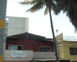 Palmera Hostel