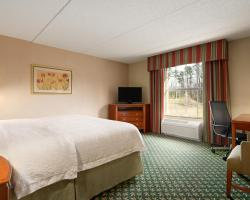 Hampton Inn & Suites Williamsburg-Central