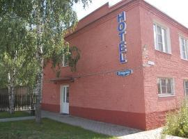 """Mini-hotel """"Medovyj"""""""