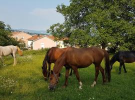 Oasis of Peace and Relaxation near Opatija, Donji Rukavac
