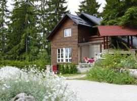 Vlašić House