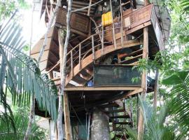 Lapa's Nest Tree House, Agujas (Dos Brazos yakınında)