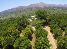 Farm House in Bio Οrange Plantation, Moírai