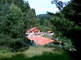 Holiday home in Rotava/Erzgebirge 1649, Rotava (Obora yakınında)