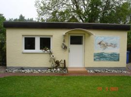 Haus-Fischadler, Breege (Juliusruh yakınında)