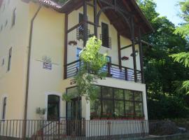 Vila Sangeorz-Bai IOANA, Valea Borcutului