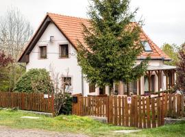 Belle Aire Pension, Matraszentlaszlo (рядом с городом Matraalmas)