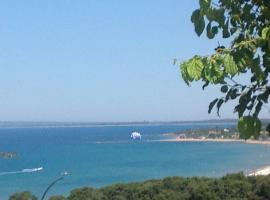 Panorama, Скафидия