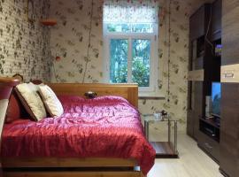 Small and cozy studio apartment