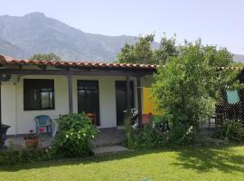 Athanasios Stafylas, Kariotes