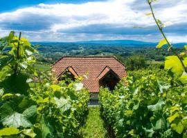 Wine Hill Rest House, Sopot (рядом с городом Kostel)
