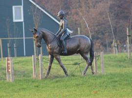 Vakantiepark Horsetellerie 6, Rheeze (in de buurt van Hardenberg)
