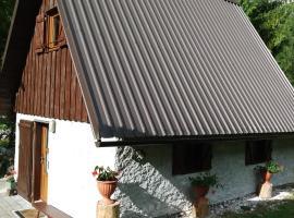 Cottage Lepena, Lepena