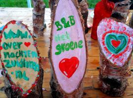B & B het groene hart, Zuidlaren