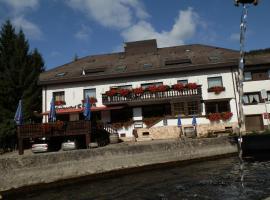 Landhotel Löwen, Blumberg (Tengen yakınında)