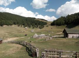 Eco Village Goles