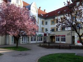 Rákóczi apartman, Шарошпатак (рядом с городом Bodrogolaszi)