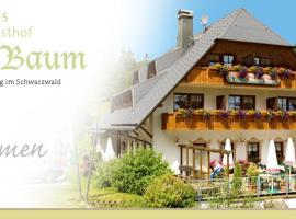 Hotel Höhengasthof Grüner Baum, Feldberg