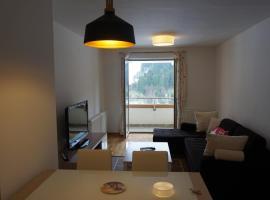 White Mountain Apartment