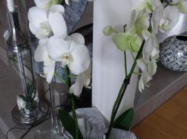 L'Orchidée, Lassay