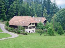 Holiday Home Schweighausen - 03, Schweighausen (Welschensteinach yakınında)