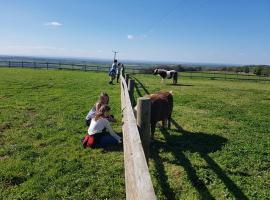 The Bull Pen, Dyrham (рядом с городом Cold Ashton)