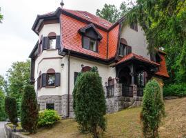 Vila Demetrovic, Rogaška Slatina