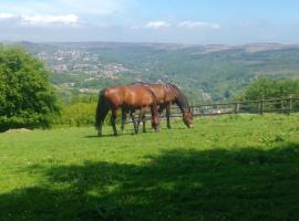 Ty Shon Jacob Farm, Pontnewynydd