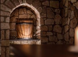 Penzión Zlatá Putňa, Viničky