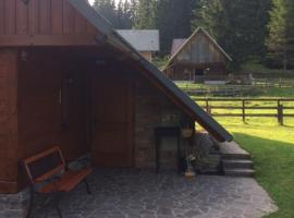 Cosy Chalet on Pokljuka for 8 persons