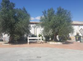 Casa Ana, Villamarciel (рядом с городом Villanueva de Duero)