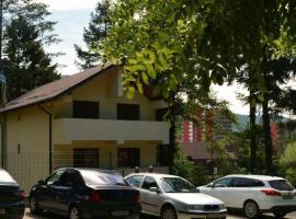 Casa Nistor, Călimăneşti