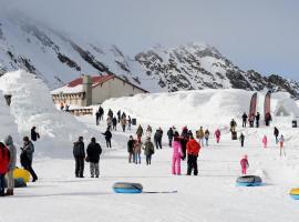 Balea Ice Hotel, Cârţişoara