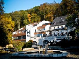 Hotel U Kozicky, Teplitz