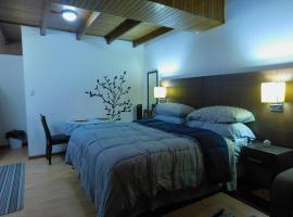 Modern Studio Loft Apt King Bed 10 min frm airport, La Asunción (Guachipelín yakınında)