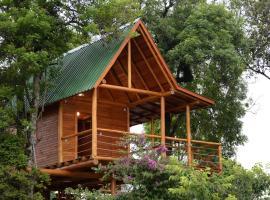 Casa na Árvore, Santa Cruz do Sul (Venâncio Aires yakınında)